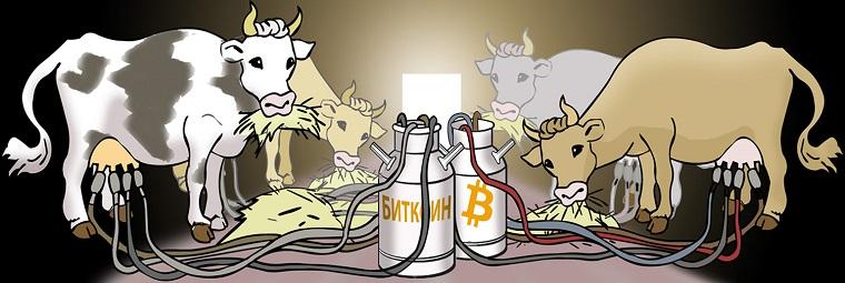 Фермы биткоинов